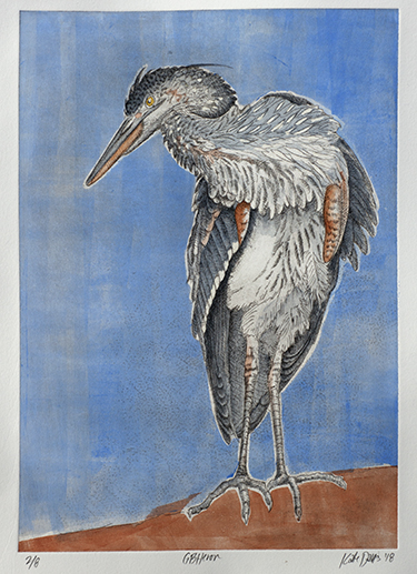 GBHeron - drypoint etching 2018